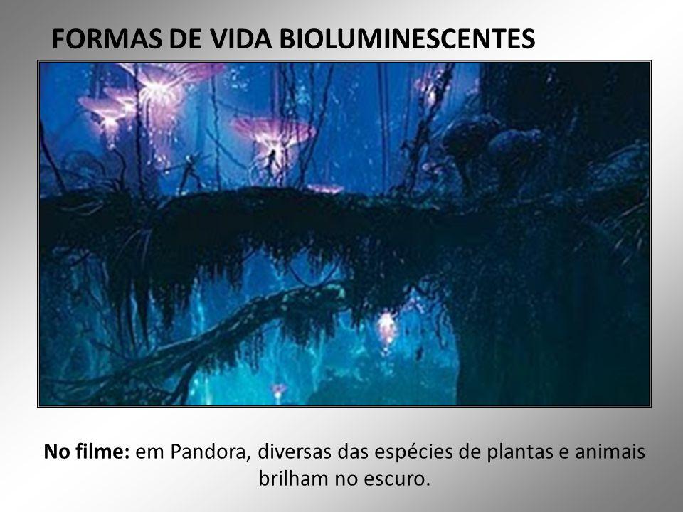 FORMAS DE VIDA BIOLUMINESCENTES No filme: em Pandora, diversas das espécies de plantas e animais brilham no escuro.