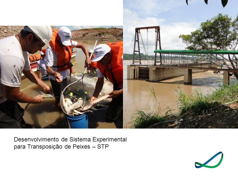 Desenvolvimento de Sistema Experimental para Transposição de Peixes – STP