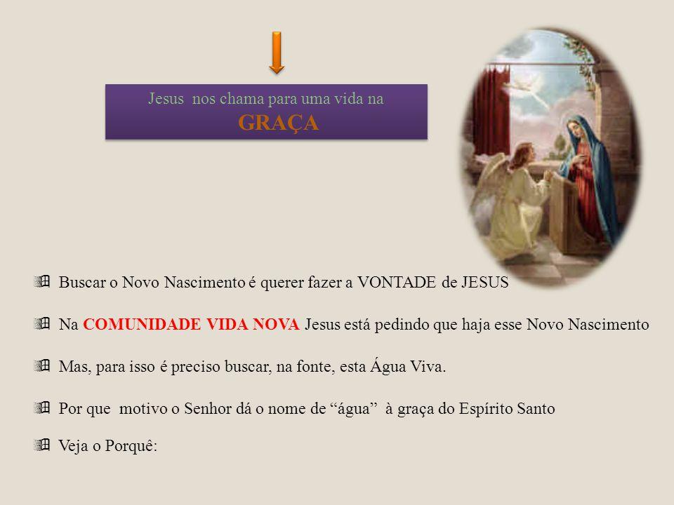 Jesus nos chama para uma vida na GRAÇA Buscar o Novo Nascimento é querer fazer a VONTADE de JESUS Na COMUNIDADE VIDA NOVA Jesus está pedindo que haja