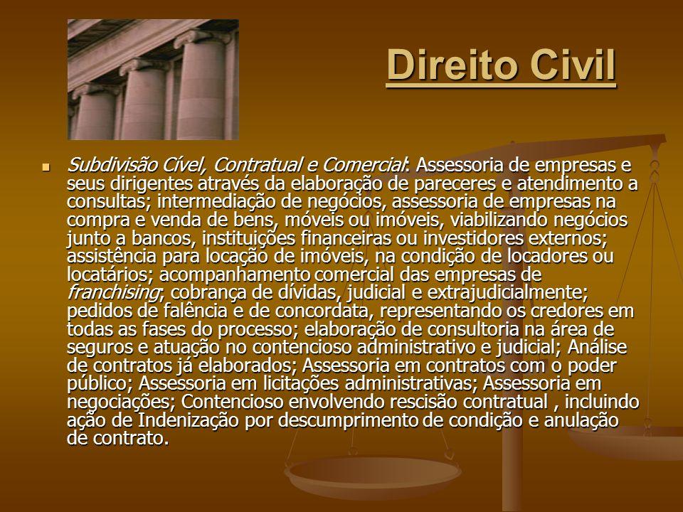 Direito Civil Subdivisão Cível, Contratual e Comercial: Assessoria de empresas e seus dirigentes através da elaboração de pareceres e atendimento a co