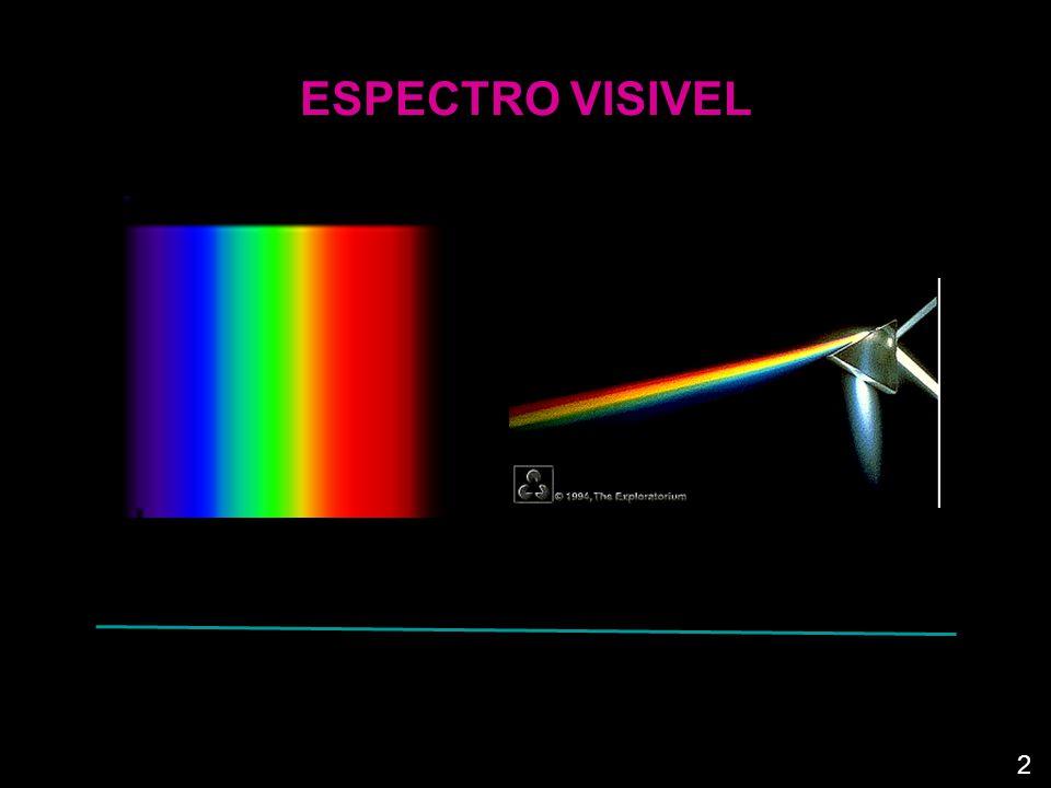 A PERCEPÇÃO DA COR Quando a luz branca incide sobre a superfície opaca de um objecto, ocorre uma absorção selectiva (absorção de radiações de certos comprimentos de onda, de preferência às de outros).