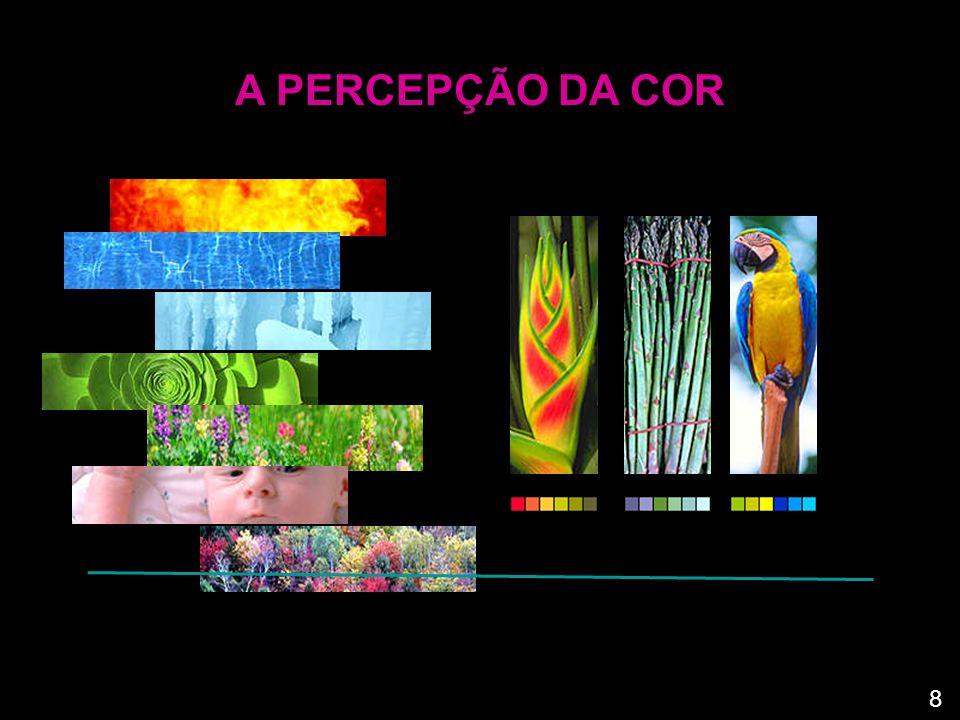 A PERCEPÇÃO DA COR A cor é, como a forma e a textura, uma propriedade visual inerente a qualquer forma.