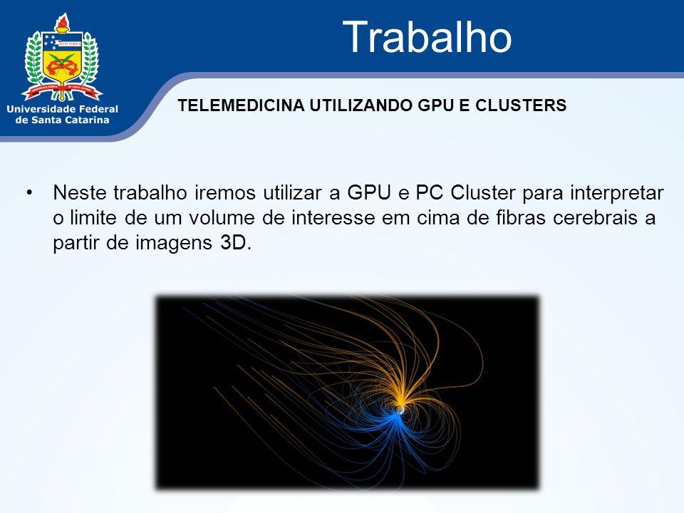 Neste trabalho iremos utilizar a GPU e PC Cluster para interpretar o limite de um volume de interesse em cima de fibras cerebrais a partir de imagens