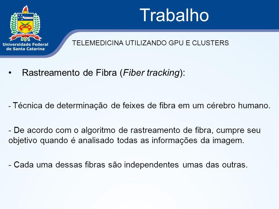Rastreamento de Fibra (Fiber tracking): - Técnica de determinação de feixes de fibra em um cérebro humano. - De acordo com o algoritmo de rastreamento