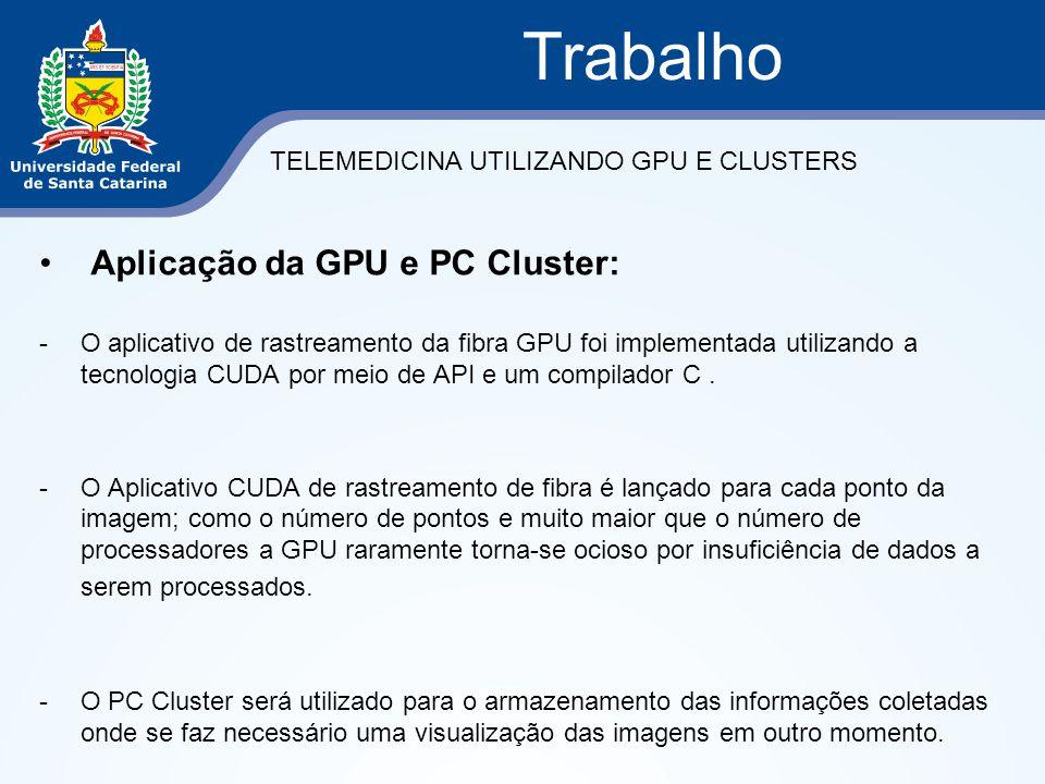 Aplicação da GPU e PC Cluster: -O aplicativo de rastreamento da fibra GPU foi implementada utilizando a tecnologia CUDA por meio de API e um compilado