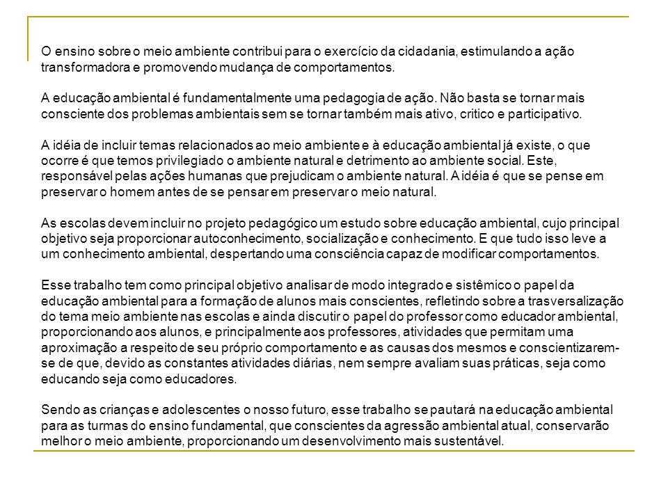 Histórico da Educação Ambiental A educação ambiental é um instrumento para o exercício da cidadania, na medida em que leva o homem a refletir e agir em nome da preservação da qualidade de vida, orientando-o para o uso adequado dos recursos naturais que, por sua vez submetida a um desenvolvimento político- econômico e social.