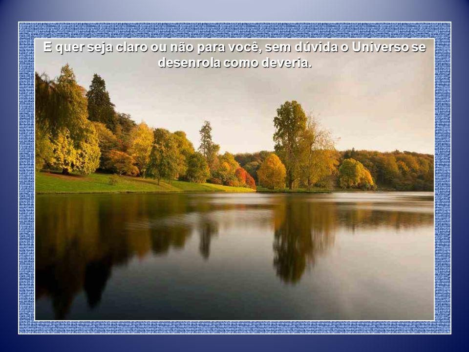 Acima de uma benéfica disciplina, seja bondoso consigo mesmo. Você é filho do Universo, não menos que as árvores e as estrelas Acima de uma benéfica d