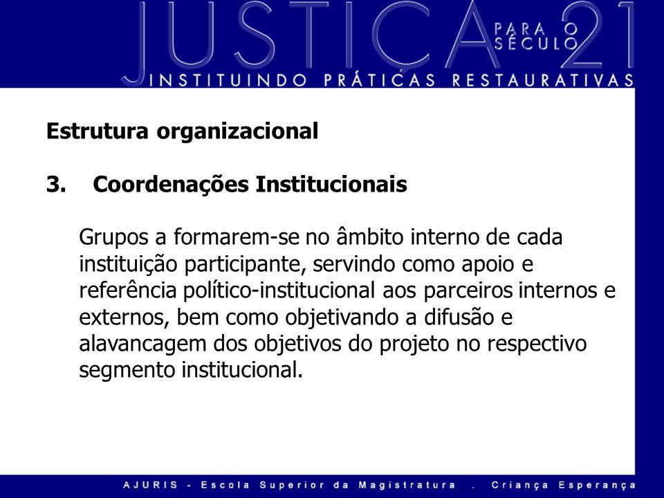 Estrutura organizacional 3. Coordenações Institucionais Grupos a formarem-se no âmbito interno de cada instituição participante, servindo como apoio e