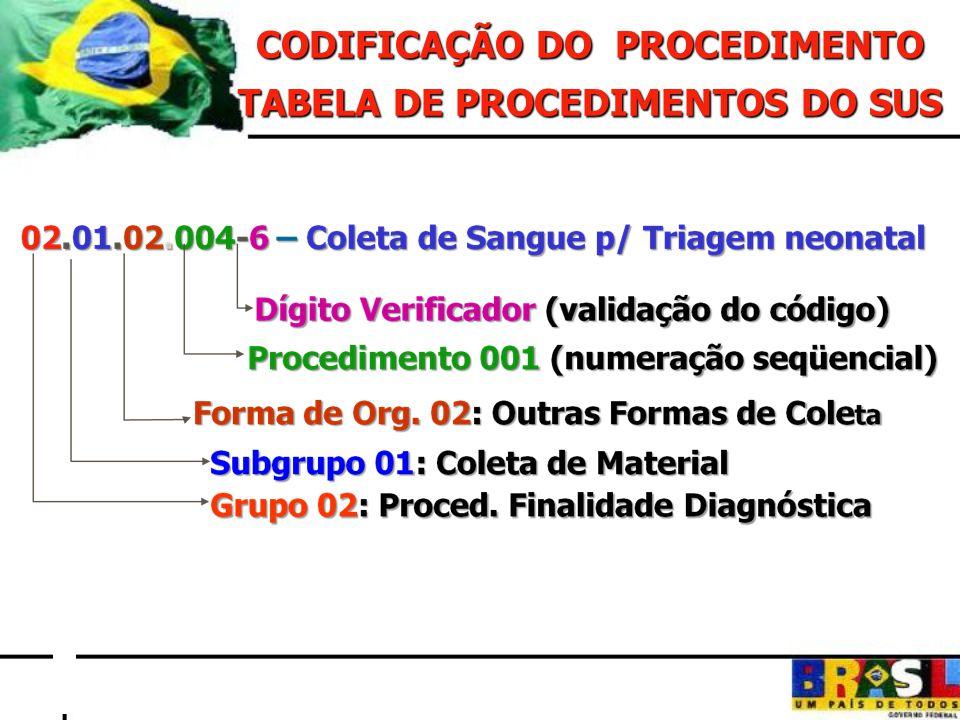 MODALIDADE INSTRUMENTO DE REGISTRO AMBULATORIAL ASSIST.