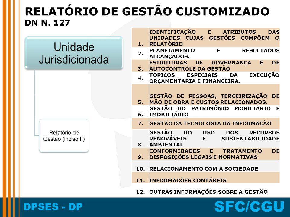 DPSES - DP SFC/CGU RELATÓRIO DE GESTÃO CUSTOMIZADO DN N.