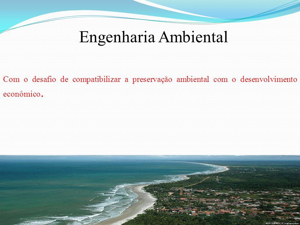Com o desafio de compatibilizar a preservação ambiental com o desenvolvimento econômico. Engenharia Ambiental