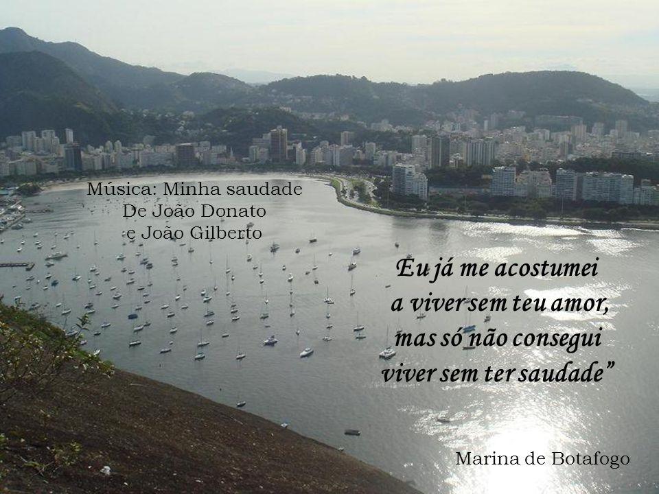 Eu já me acostumei a viver sem teu amor, mas só não consegui viver sem ter saudade Música: Minha saudade De João Donato e João Gilberto Marina de Botafogo