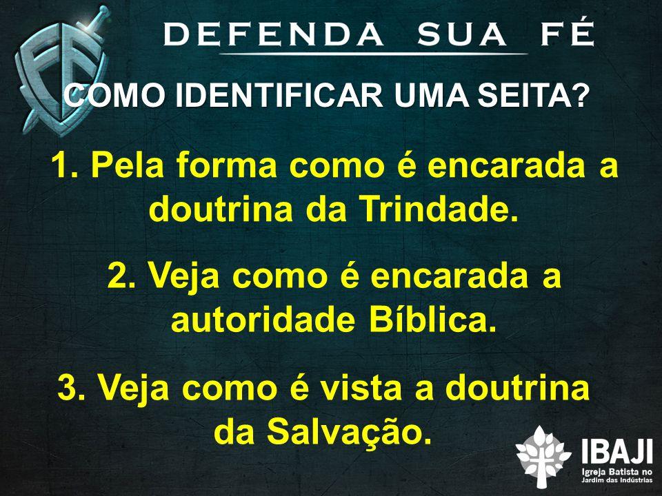 COMO IDENTIFICAR UMA SEITA? 3. Veja como é vista a doutrina da Salvação. 2. Veja como é encarada a autoridade Bíblica. 1. Pela forma como é encarada a