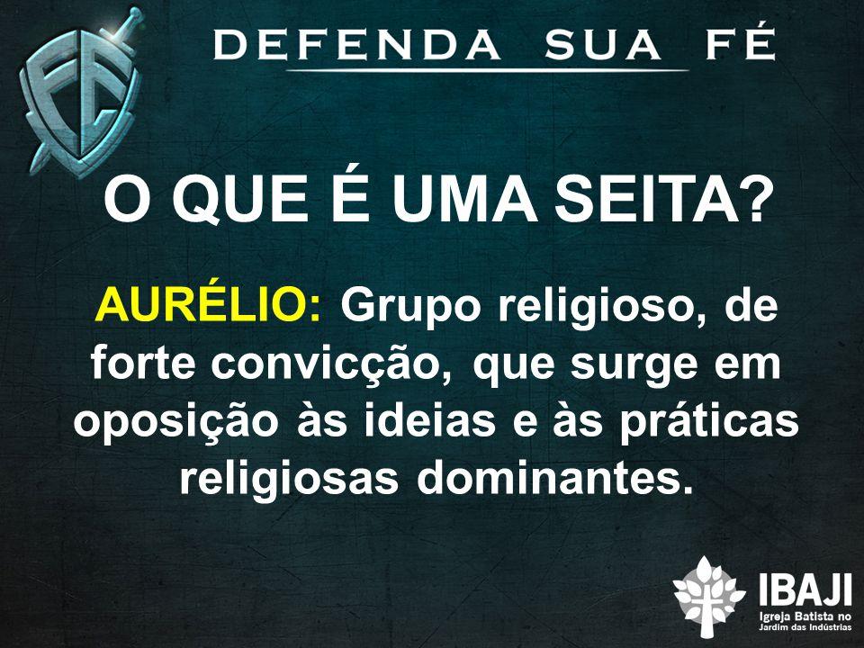 O QUE É UMA SEITA? AURÉLIO: Grupo religioso, de forte convicção, que surge em oposição às ideias e às práticas religiosas dominantes.