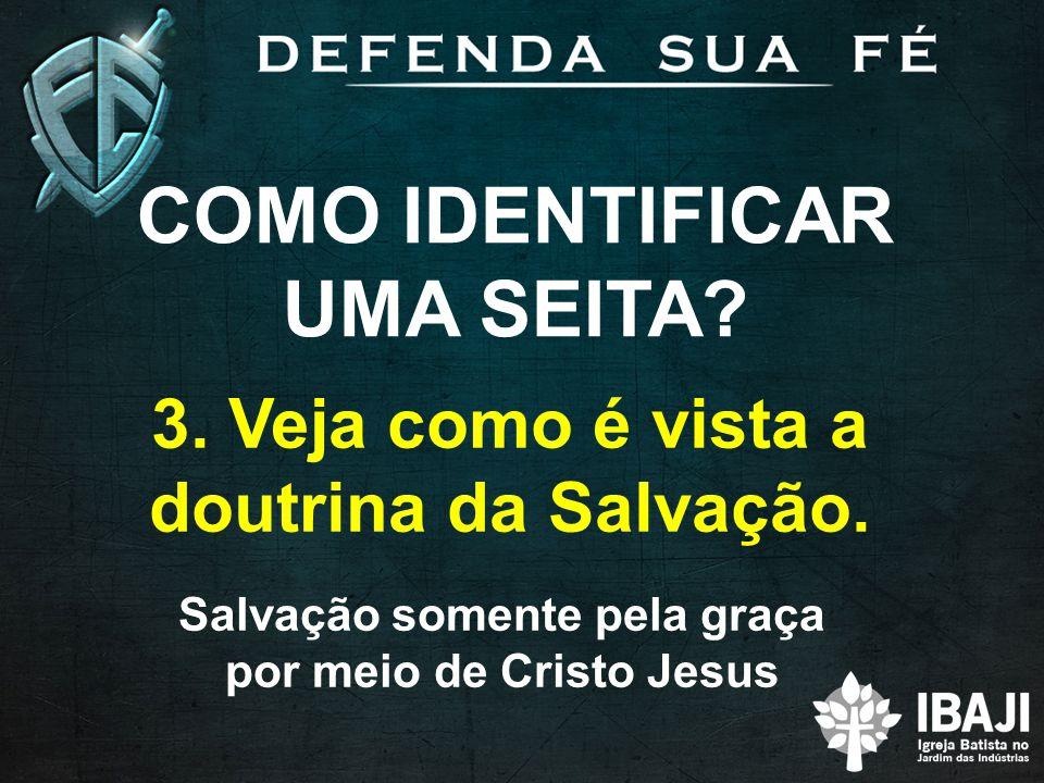 COMO IDENTIFICAR UMA SEITA? 3. Veja como é vista a doutrina da Salvação. Salvação somente pela graça por meio de Cristo Jesus
