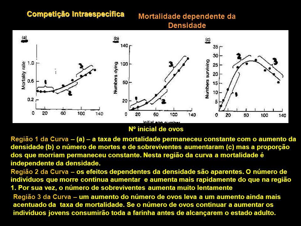 Competição Intraespecífica Mortalidade dependente da Densidade Nº inicial de ovos Região 1 da Curva – (a) – a taxa de mortalidade permaneceu constante