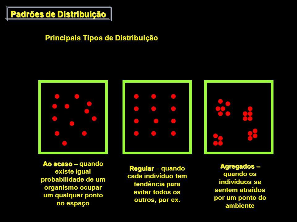 Padrões de Distribuição Principais Tipos de Distribuição Ao acaso Ao acaso – quando existe igual probabilidade de um organismo ocupar um qualquer pont