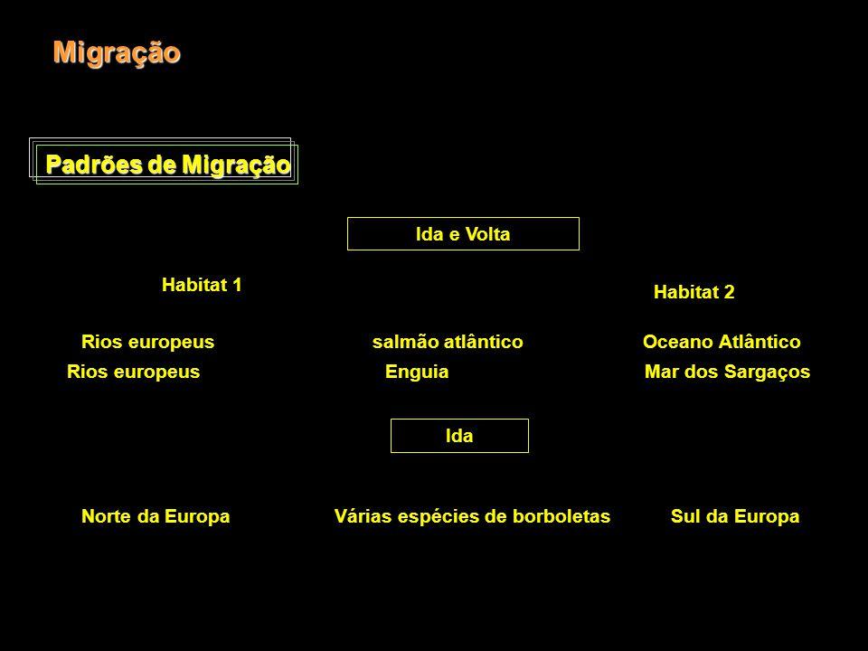Padrões de Migração Migração Ida e Volta Habitat 1 Habitat 2 Rios europeus salmão atlântico Oceano Atlântico Rios europeus Enguia Mar dos Sargaços Ida