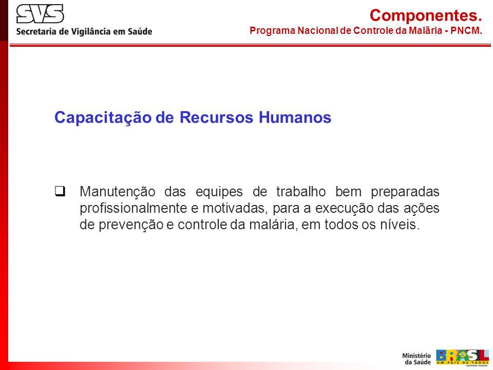 Capacitação de Recursos Humanos Manutenção das equipes de trabalho bem preparadas profissionalmente e motivadas, para a execução das ações de prevençã