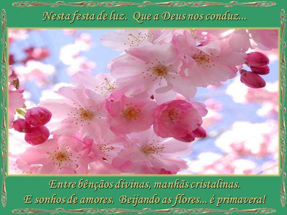 Em toda parte fulgura. A doce ternura de flores bailando. O perfume espalhando, ao sopro da brisa. O sol a brilhar, e a terra a cantar.