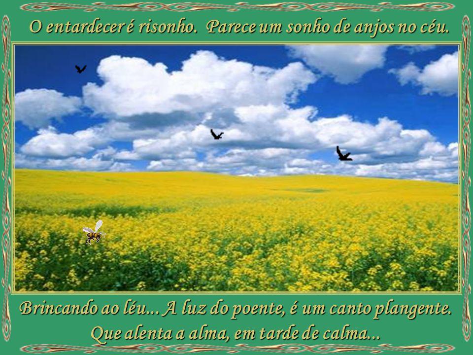 Nesta festa de luz. Que a Deus nos conduz... Entre bênçãos divinas, manhãs cristalinas. E sonhos de amores. Beijando as flores... é primavera!