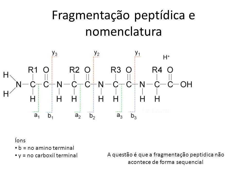 Fragmentação peptídica e nomenclatura Íons b = no amino terminal y = no carboxil terminal A questão é que a fragmentação peptidica não acontece de for