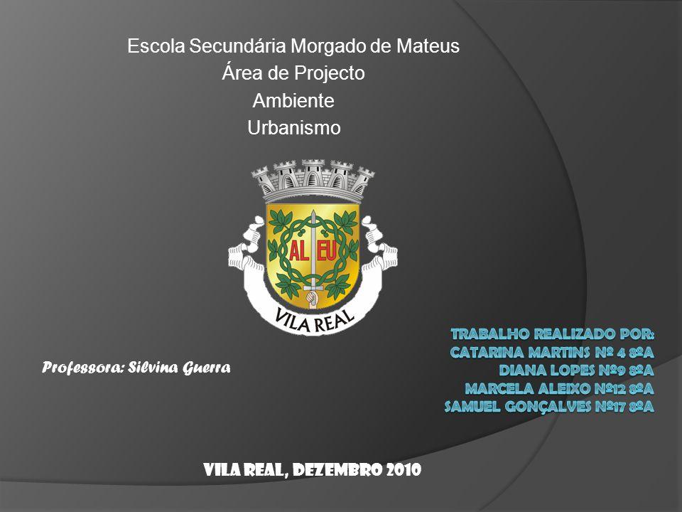Escola Secundária Morgado de Mateus Área de Projecto Ambiente Urbanismo Professora: Silvina Guerra Vila Real, Dezembro 2010