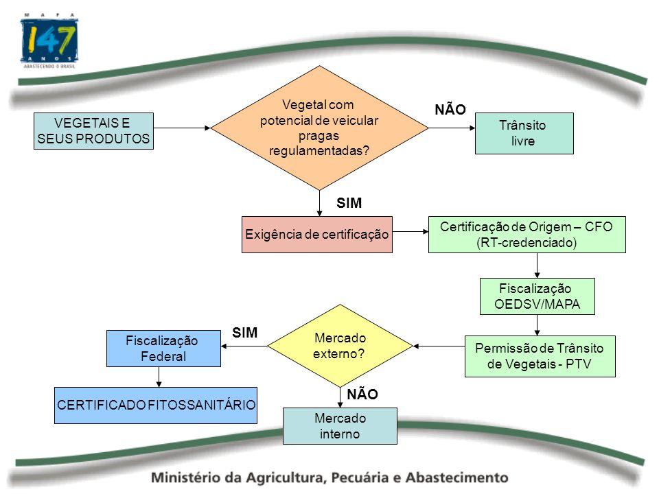 VEGETAIS E SEUS PRODUTOS Vegetal com potencial de veicular pragas regulamentadas? Trânsito livre NÃO SIM Exigência de certificação Certificação de Ori
