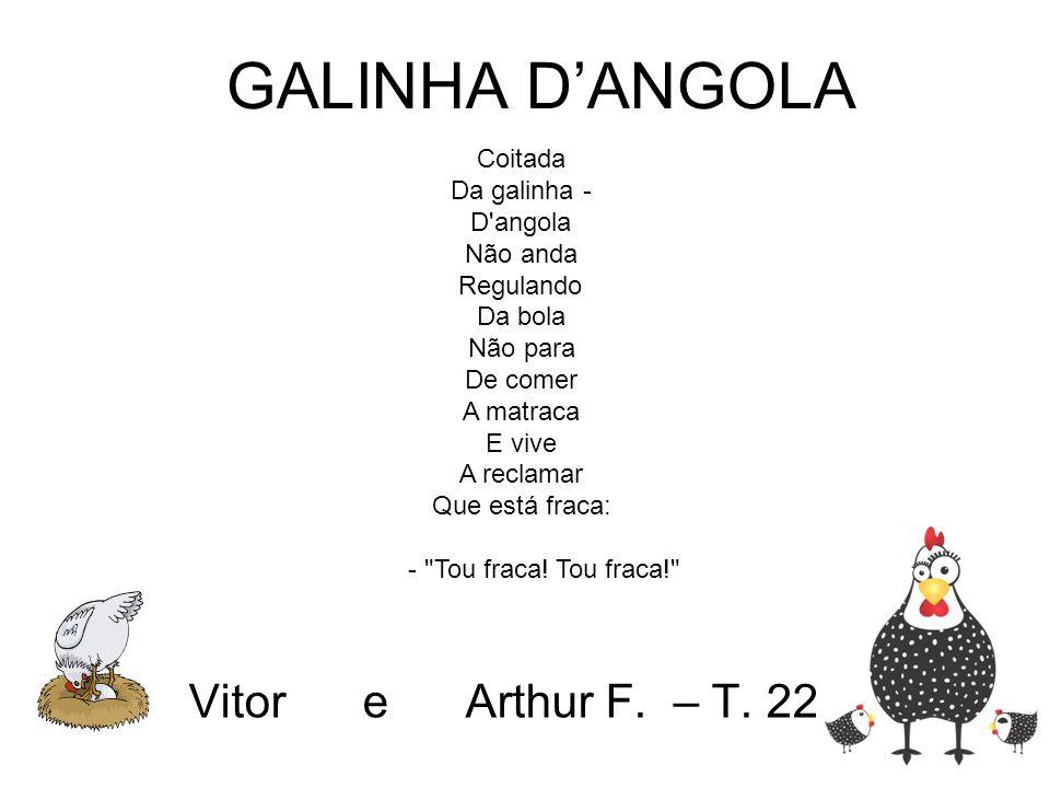Vitor e Arthur F. – T. 22