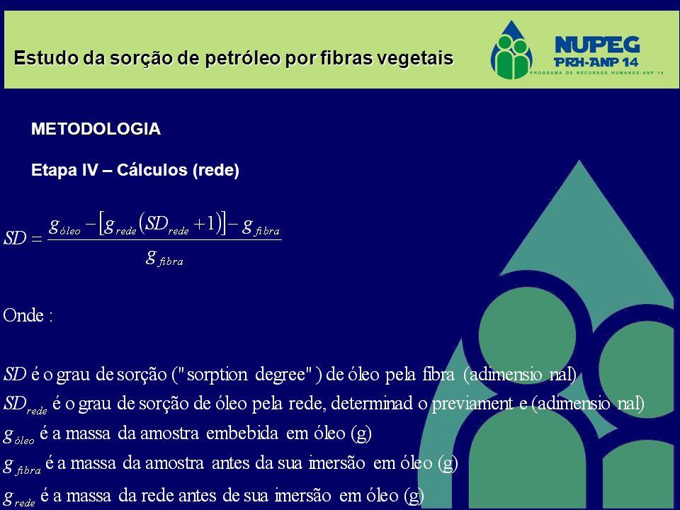Estudo da sorção de petróleo por fibras vegetais METODOLOGIA Etapa IV – Cálculos (rede)