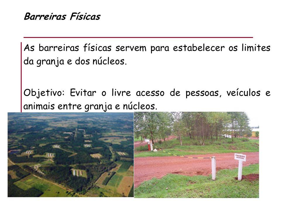Barreiras Físicas As barreiras físicas servem para estabelecer os limites da granja e dos núcleos. Objetivo: Evitar o livre acesso de pessoas, veículo