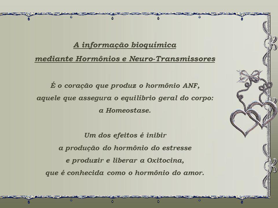 A informação bioquímica mediante Hormônios e Neuro-Transmissores É o coração que produz o hormônio ANF, aquele que assegura o equilíbrio geral do corpo: a Homeostase.
