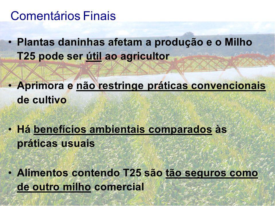 Comentários Finais Plantas daninhas afetam a produção e o Milho T25 pode ser útil ao agricultor Aprimora e não restringe práticas convencionais de cul