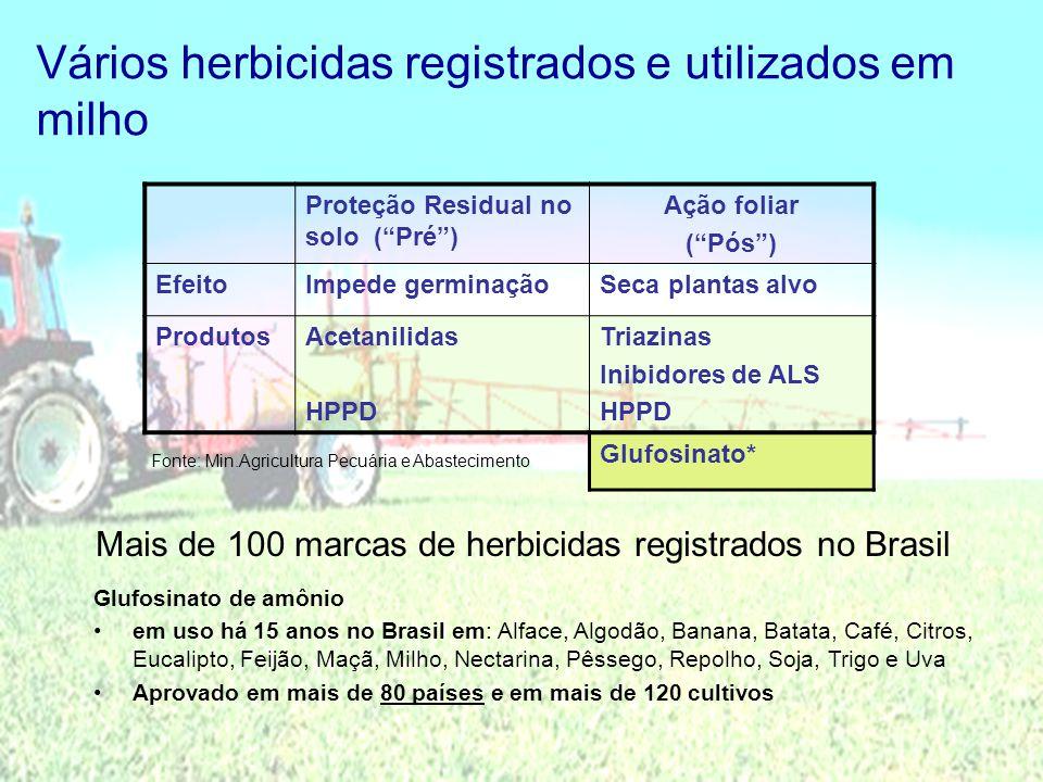 Vários herbicidas registrados e utilizados em milho Proteção Residual no solo (Pré) Ação foliar (Pós) EfeitoImpede germinaçãoSeca plantas alvo Produto