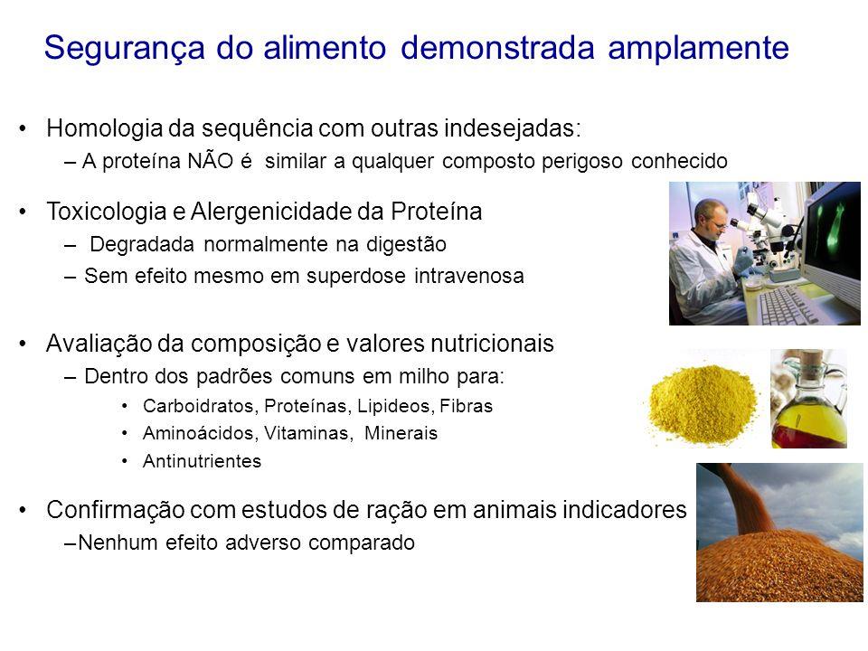 Segurança do alimento demonstrada amplamente Homologia da sequência com outras indesejadas: – A proteína NÃO é similar a qualquer composto perigoso co
