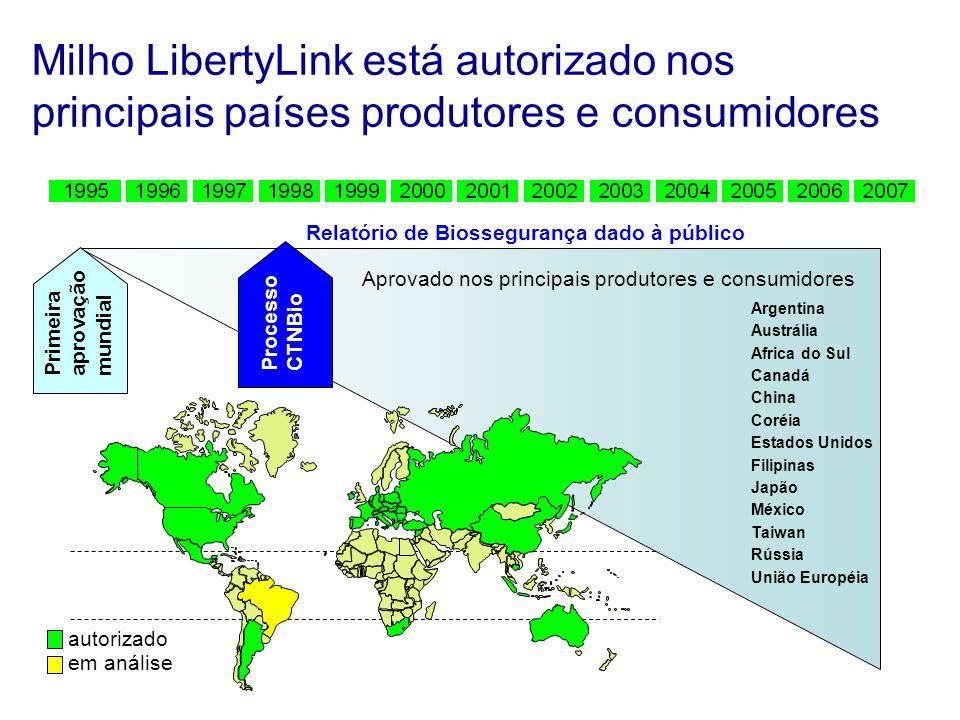 Milho LibertyLink está autorizado nos principais países produtores e consumidores Argentina Austrália Africa do Sul Canadá China Coréia Estados Unidos