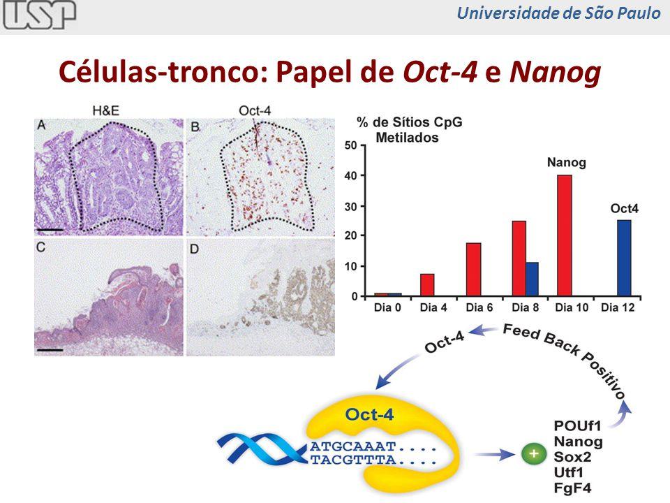 Células-tronco: Papel de Oct-4 e Nanog Universidade de São Paulo