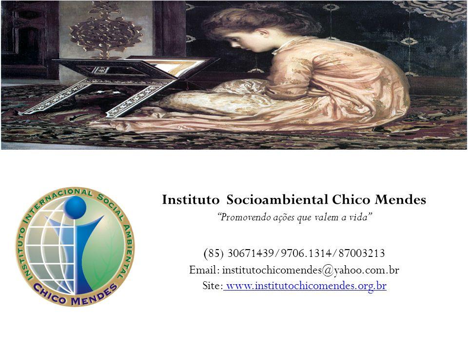 Instituto Socioambiental Chico Mendes Promovendo ações que valem a vida ( 85) 30671439/9706.1314/87003213 Email: institutochicomendes@yahoo.com.br Sit