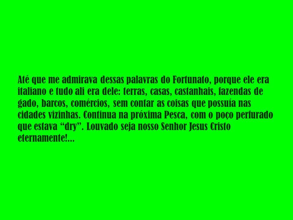 Até que me admirava dessas palavras do Fortunato, porque ele era italiano e tudo ali era dele: terras, casas, castanhais, fazendas de gado, barcos, comércios, sem contar as coisas que possuía nas cidades vizinhas.