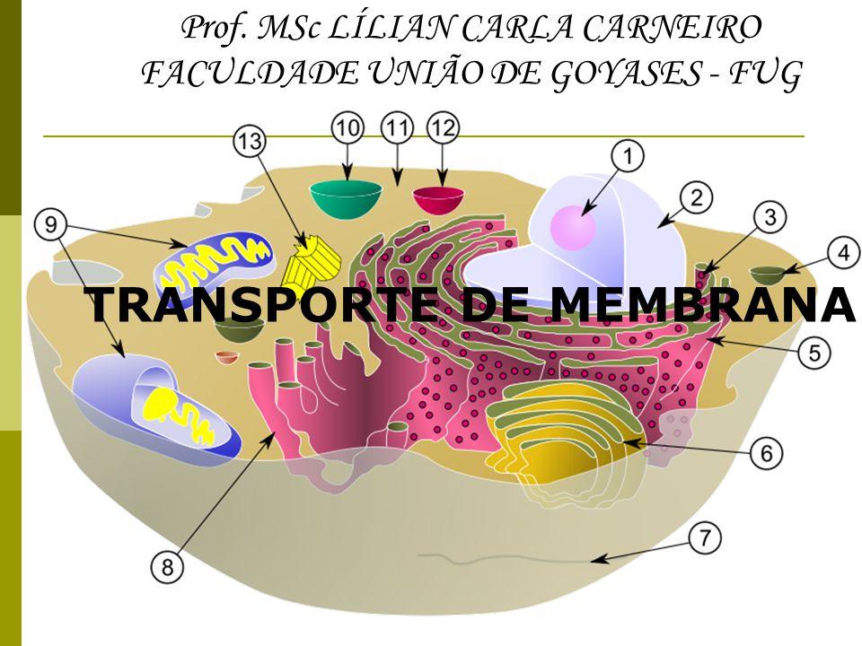 Prof. MSc LÍLIAN CARLA CARNEIRO FACULDADE UNIÃO DE GOYASES - FUG TRANSPORTE DE MEMBRANA