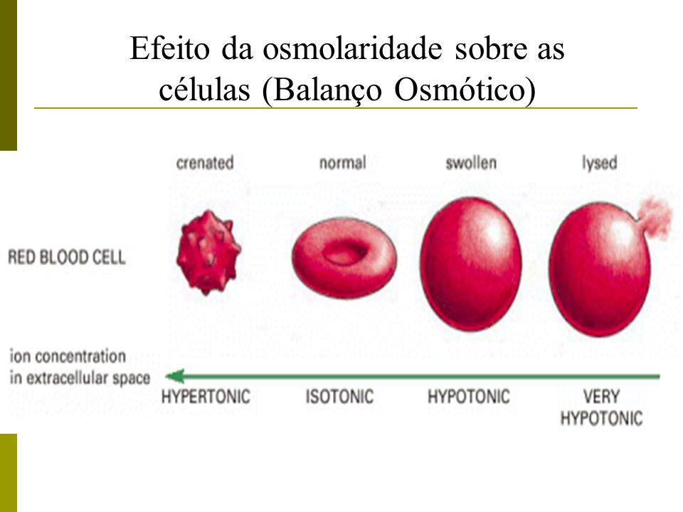 Efeito da osmolaridade sobre as células (Balanço Osmótico)