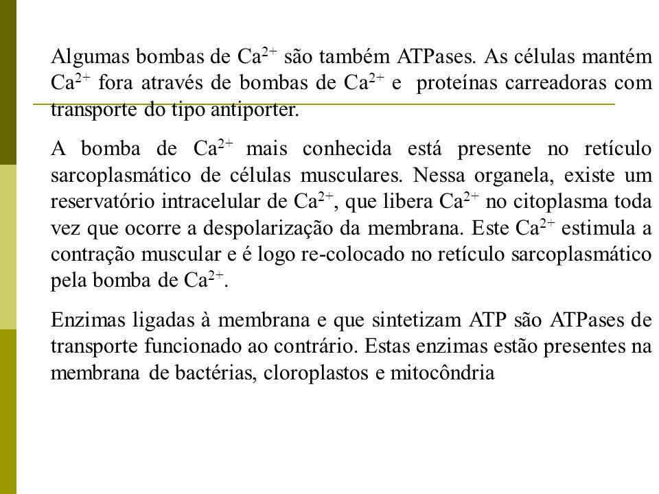 Algumas bombas de Ca 2+ são também ATPases. As células mantém Ca 2+ fora através de bombas de Ca 2+ e proteínas carreadoras com transporte do tipo ant