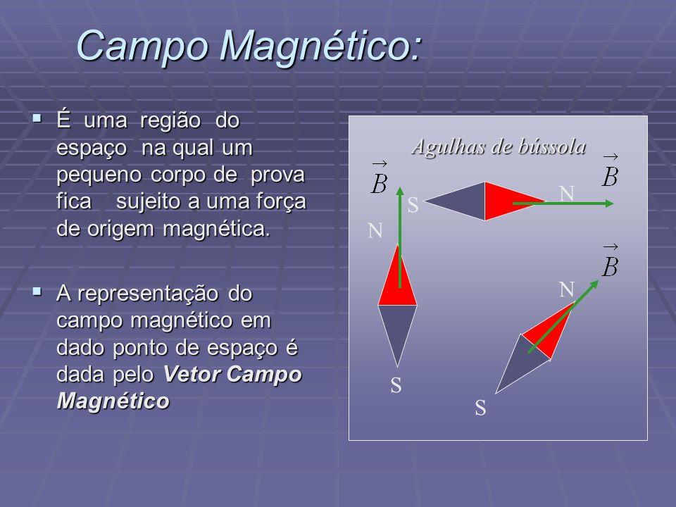Campo Magnético: É uma região do espaço na qual um pequeno corpo de prova fica sujeito a uma força de origem magnética.