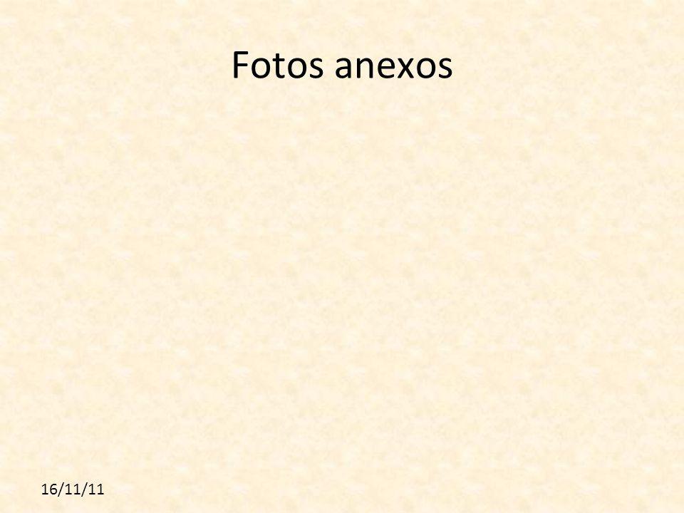 16/11/11 Fotos anexos
