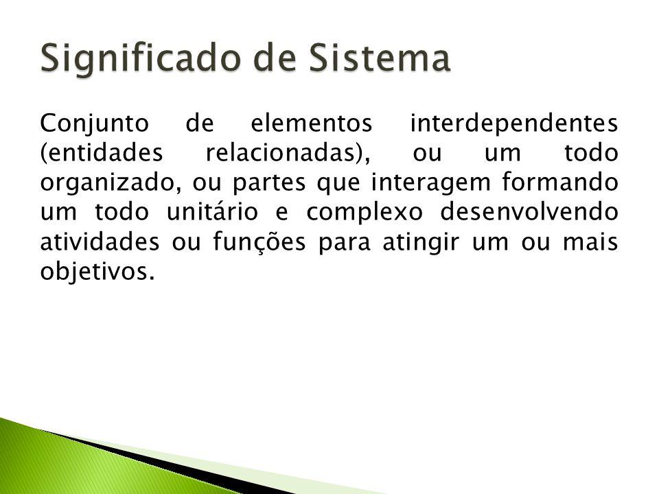 Conjunto de elementos interdependentes (entidades relacionadas), ou um todo organizado, ou partes que interagem formando um todo unitário e complexo desenvolvendo atividades ou funções para atingir um ou mais objetivos.