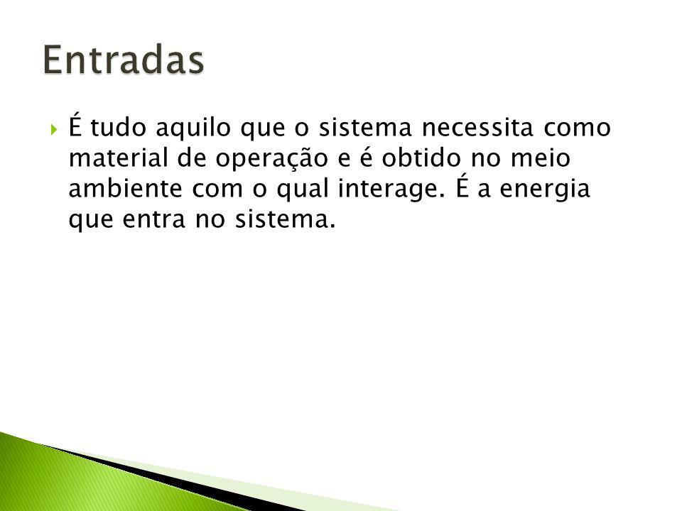 É tudo aquilo que o sistema necessita como material de operação e é obtido no meio ambiente com o qual interage.