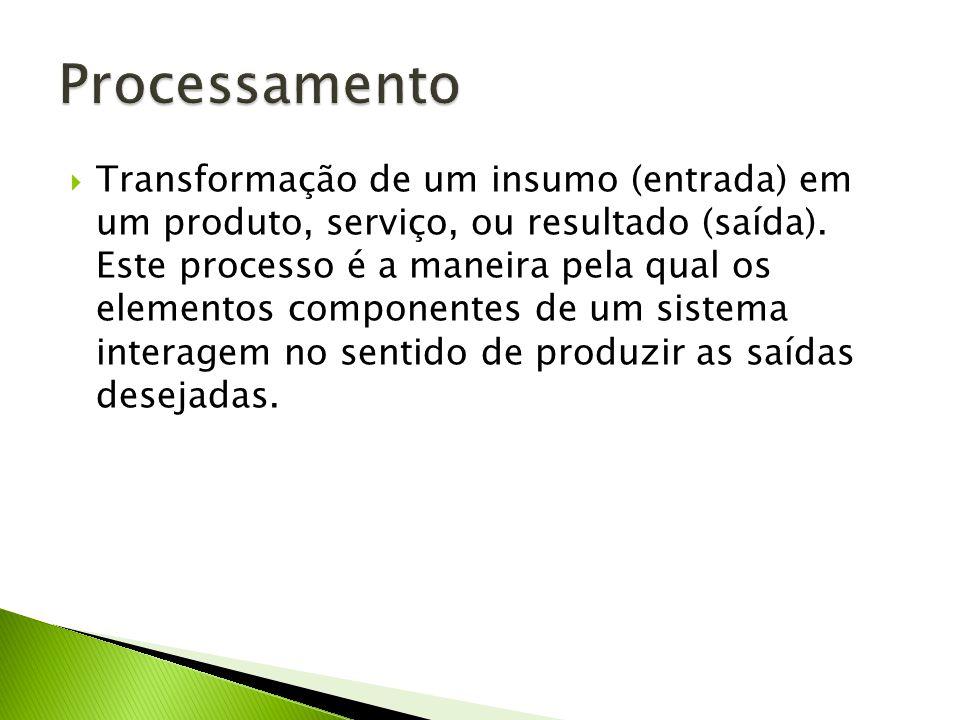 Transformação de um insumo (entrada) em um produto, serviço, ou resultado (saída). Este processo é a maneira pela qual os elementos componentes de um