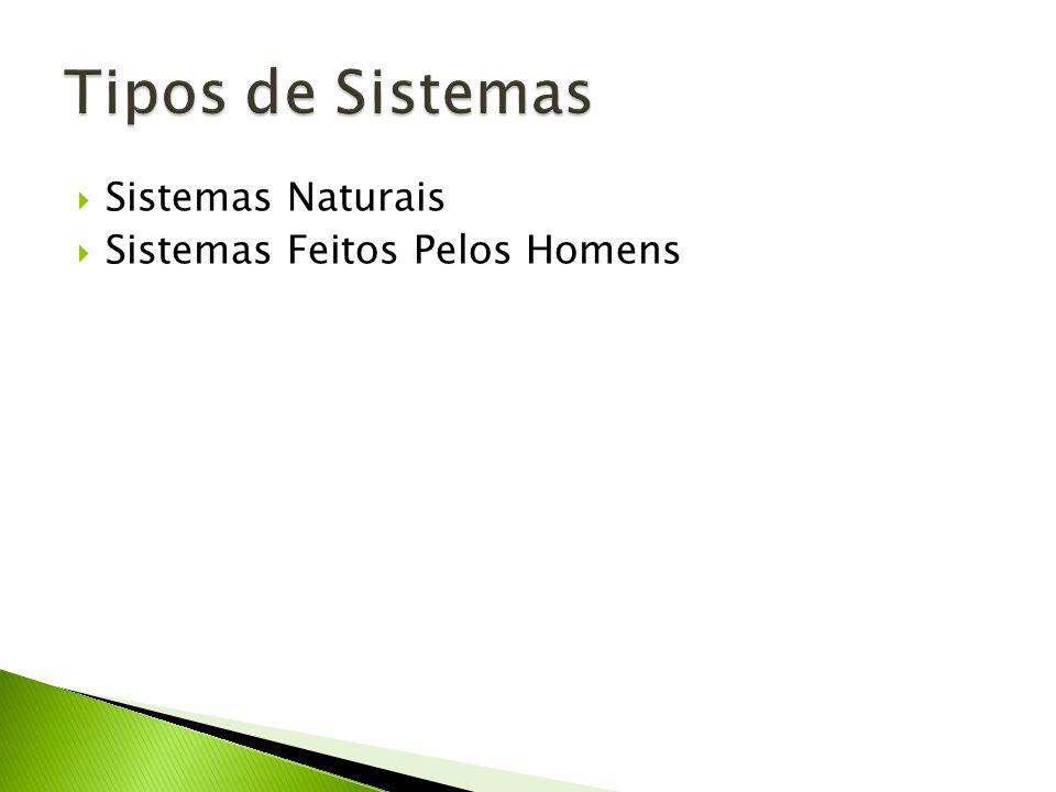 Sistemas Naturais Sistemas Feitos Pelos Homens