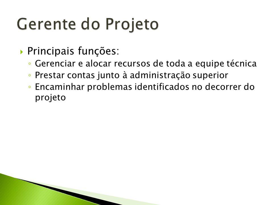 Principais funções: Gerenciar e alocar recursos de toda a equipe técnica Prestar contas junto à administração superior Encaminhar problemas identificados no decorrer do projeto