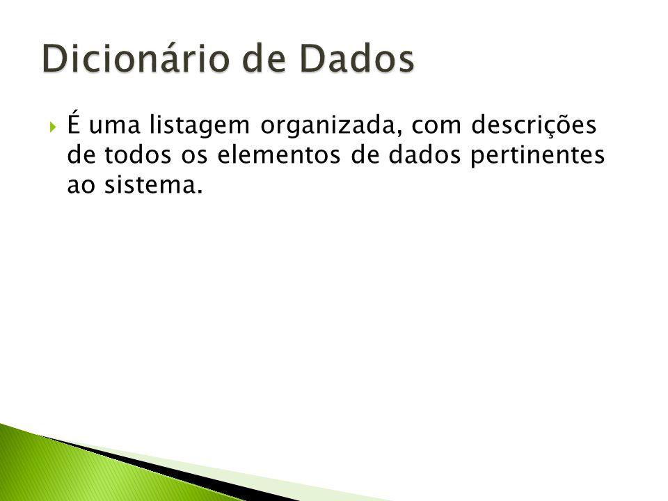 É uma listagem organizada, com descrições de todos os elementos de dados pertinentes ao sistema.